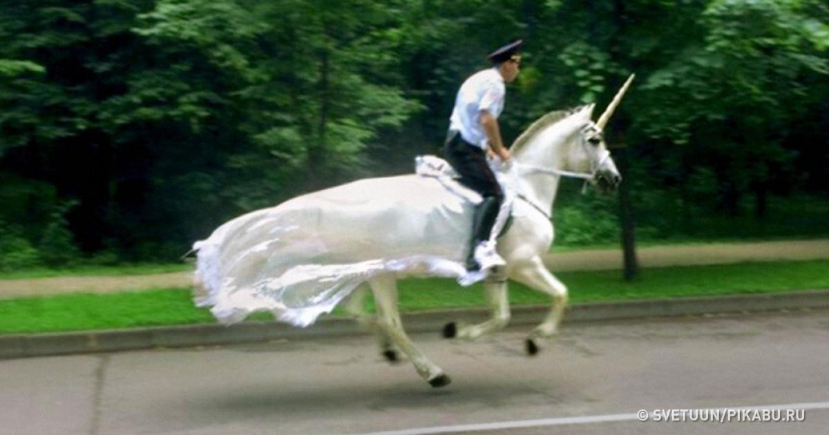 12Agents depolice dont lesens del'humour est admirable