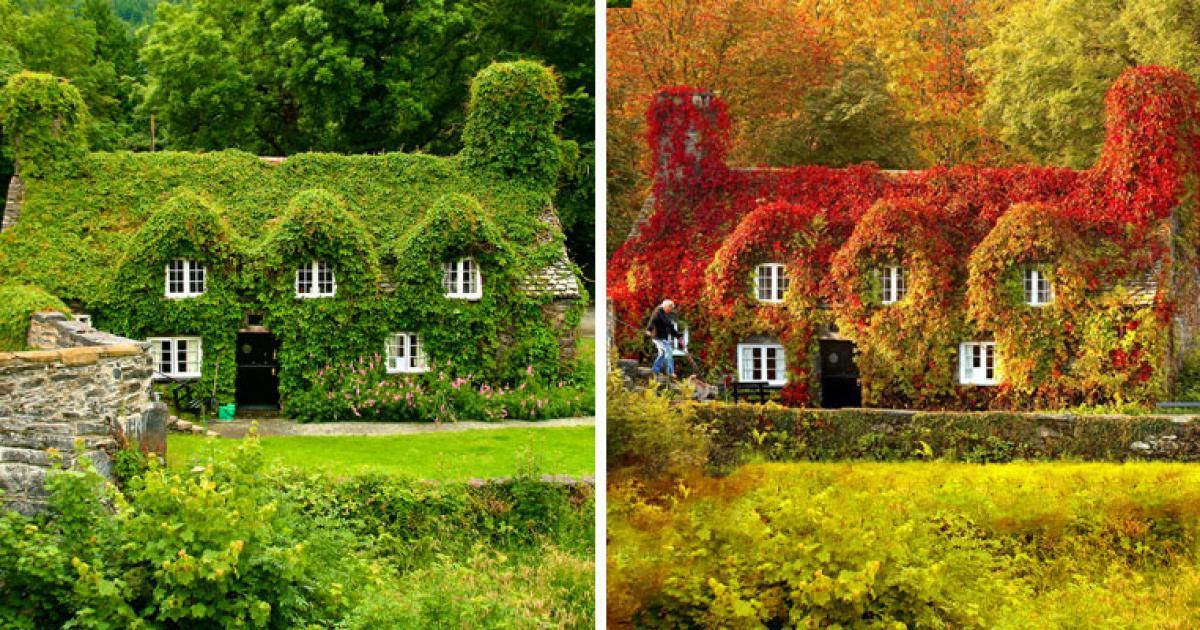 12 photos qui montrent à quel point l'automne cause des transformations magiques.