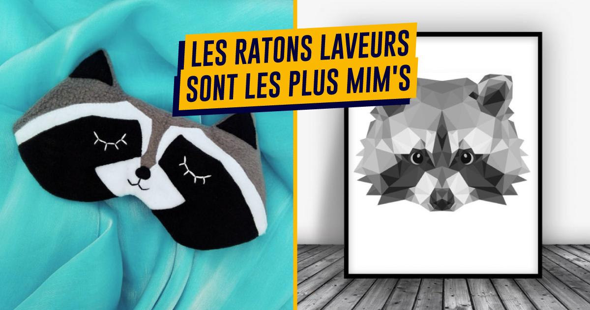 Top 15+ des cadeaux à faire aux amoureux des ratons laveurs