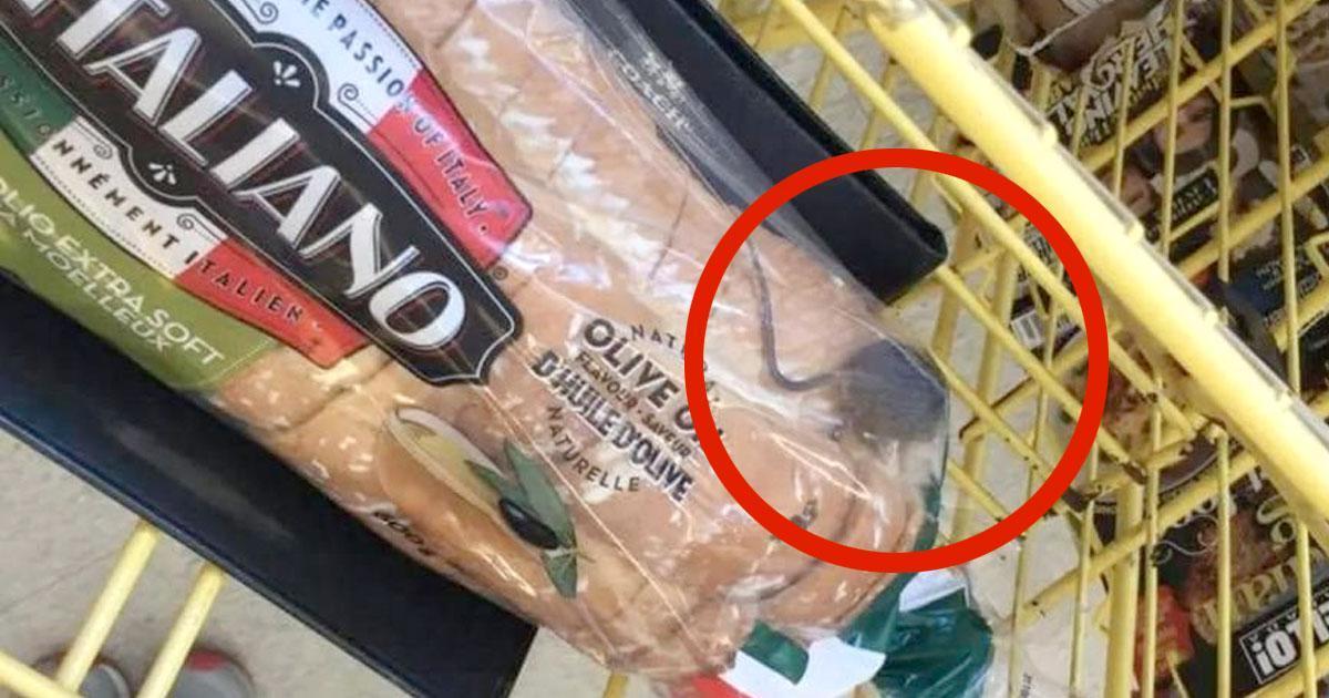 Un homme affirme qu'il a trouvé une souris vivante dans son pain à l'épicerie