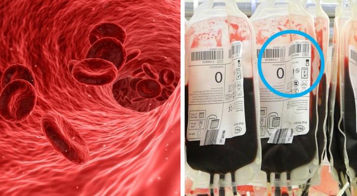 Si vous avez le groupe sanguin '0', voici quelques faits que vous devriez connaître