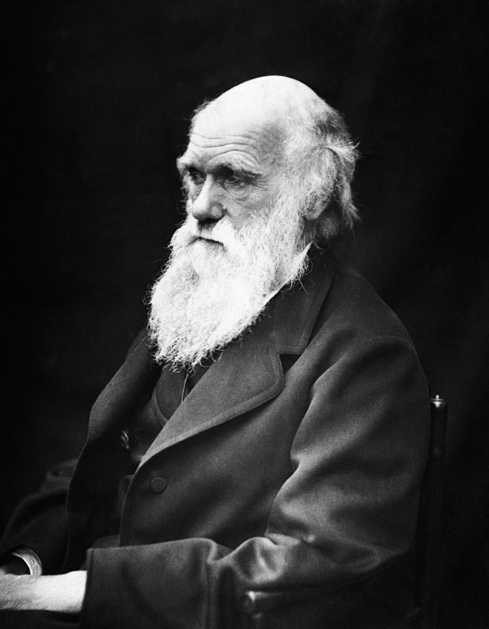 Darwin souffrait-il de la maladie de Lyme ? – SciencePost