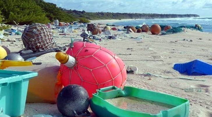 De patrimoine de l'Humanité à décharge en plein air : le triste déclin de l'île Henderson
