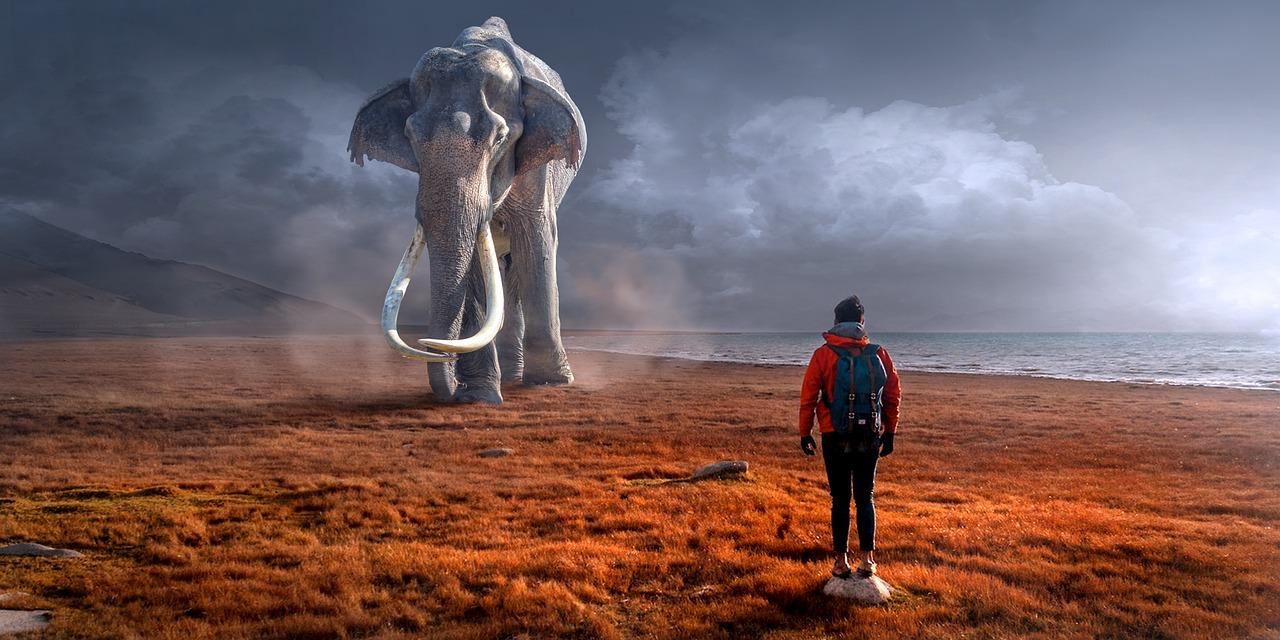 L'Homme pousse les plus grands animaux de la Terre à l'extinction – SciencePost