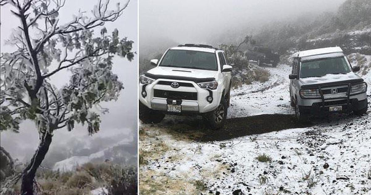 Une puissante tempête amène des flocons de neige jusqu'à Hawaï.