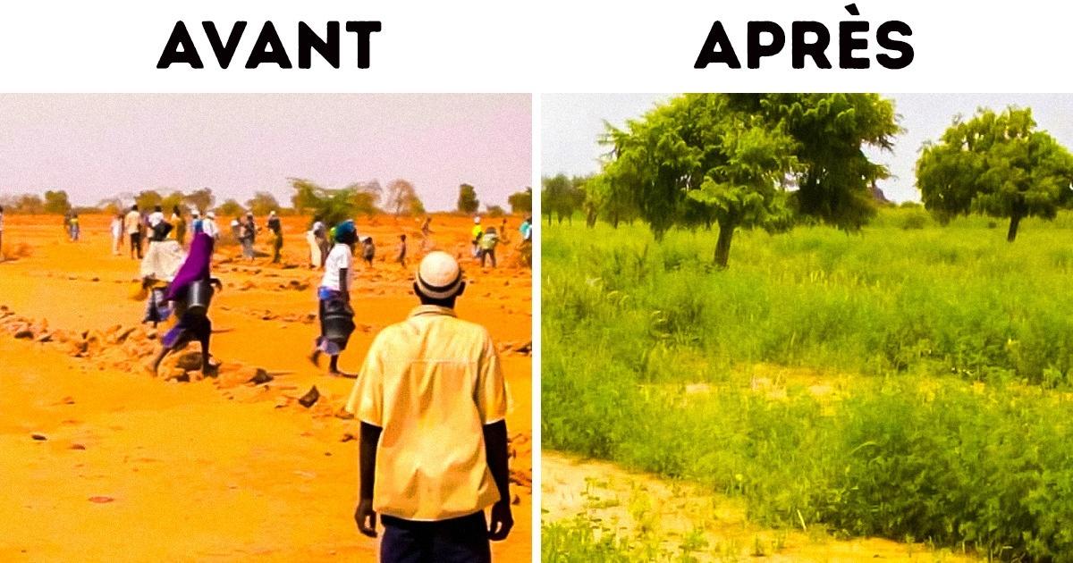 Un moteur de recherche plante des arbres lorsque tu l'utilises. Des millions de personnes ont déjà cliqué pour sauver la planète
