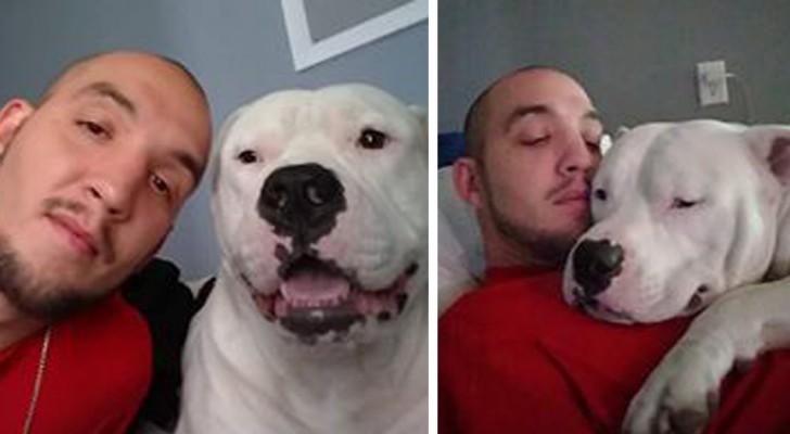 Le chien a besoin d'une opération, alors le maître vend sa voiture pour le sauver