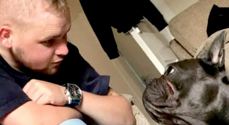 Le maître meurt après une longue maladie : son fidèle petit chien le suit 15 minutes plus tard