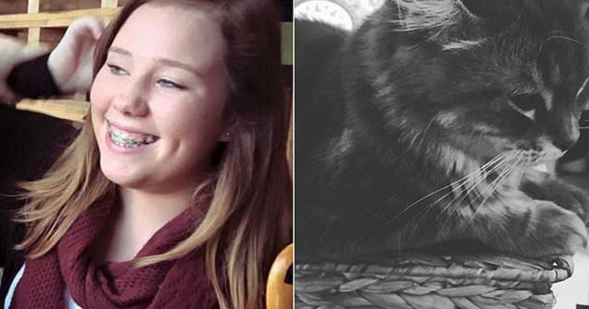 Une jeune femme poignarde son chat à plus de 20 reprises avant de le jeter du balcon
