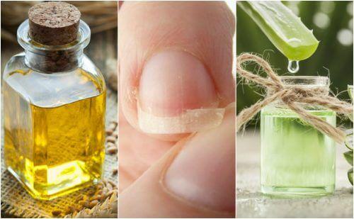 5 remèdes d'origine naturelle pour soulager les ongles cassés — Améliore ta Santé