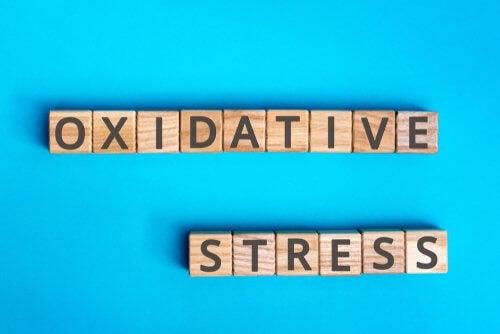 Stress oxydant : en quoi cela consiste ? — Améliore ta Santé
