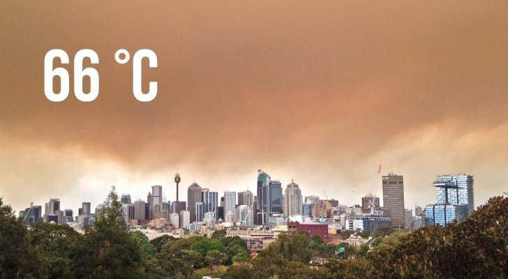 Une température record de 66 °C a été relevée dans une ville d'Australie en raison des incendies