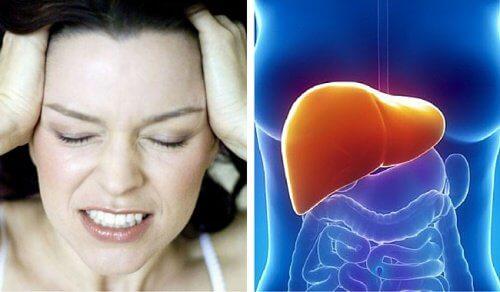 Réprimer votre colère endommage votre foie — Améliore ta Santé