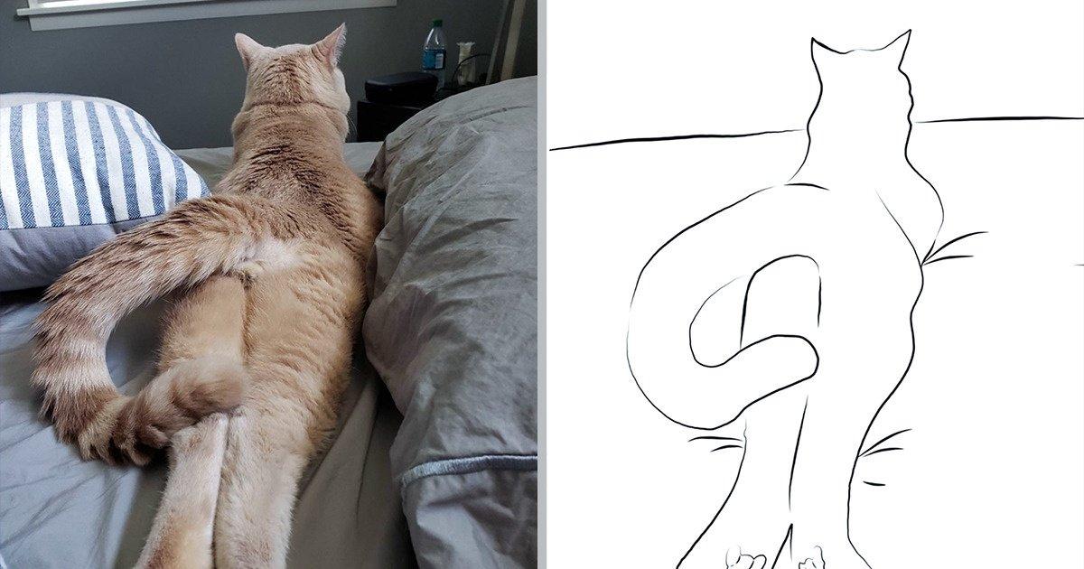 15 Usagers des réseaux ont partagé des illustrations minimalistes de leurs chats que tu vas tout simplement adorer