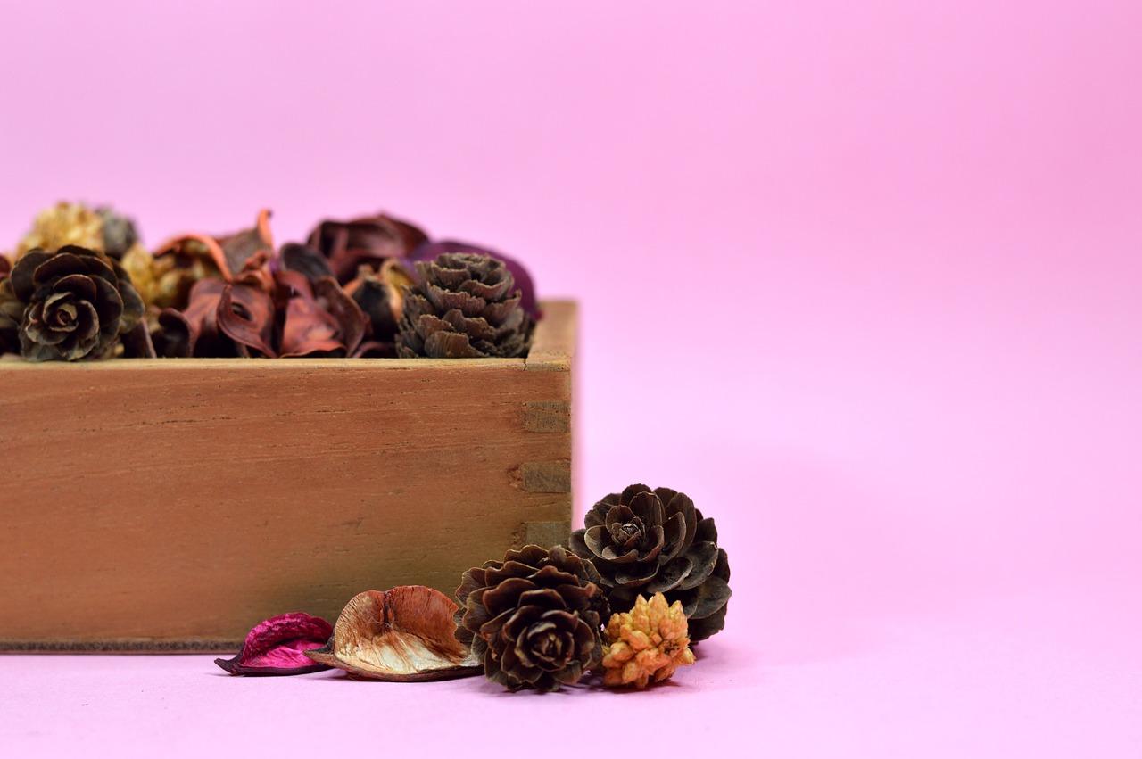 3 parfums d'ambiance maison à créer soi-même – Astuces de grand mère