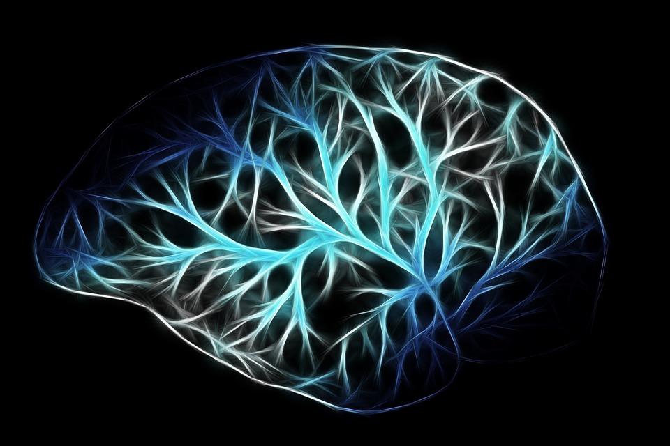 Des chercheurs ont créé une nouvelle interface cerveau-ordinateur pour rendre une certaine autonomie aux patients paralysés