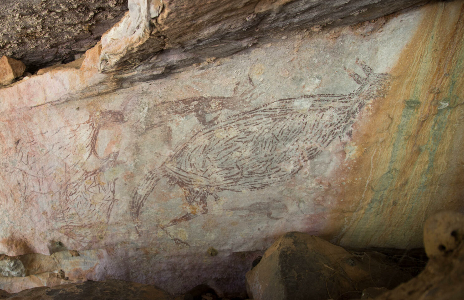Découverte de la plus ancienne peinture rupestre d'Australie