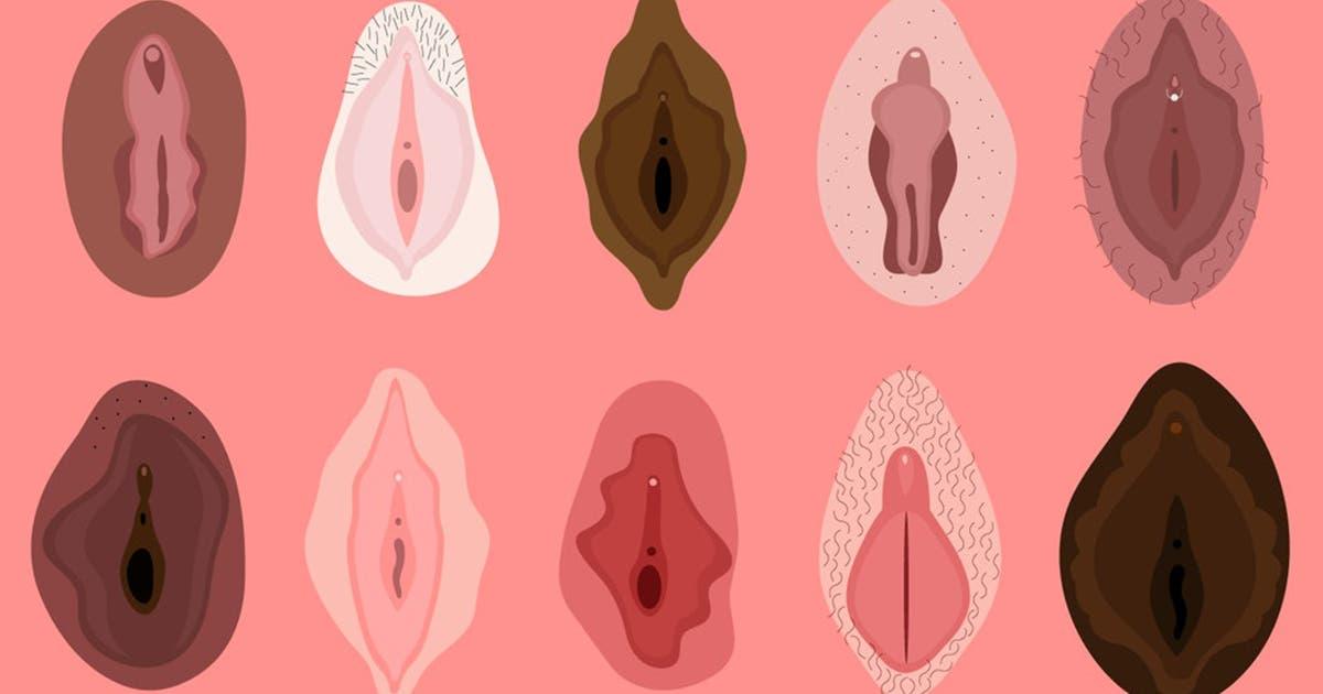 Oui, il existe 13 types de vagin dans le monde
