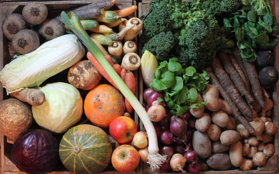 Potager : les 5 pires associations à éviter avec vos légumes