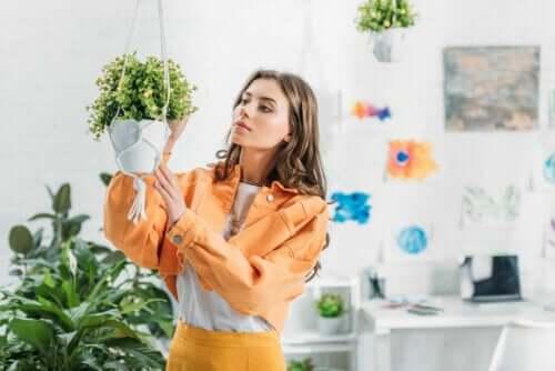 Comment faire un pot suspendu maison pour vos plantes ? – Améliore ta Santé