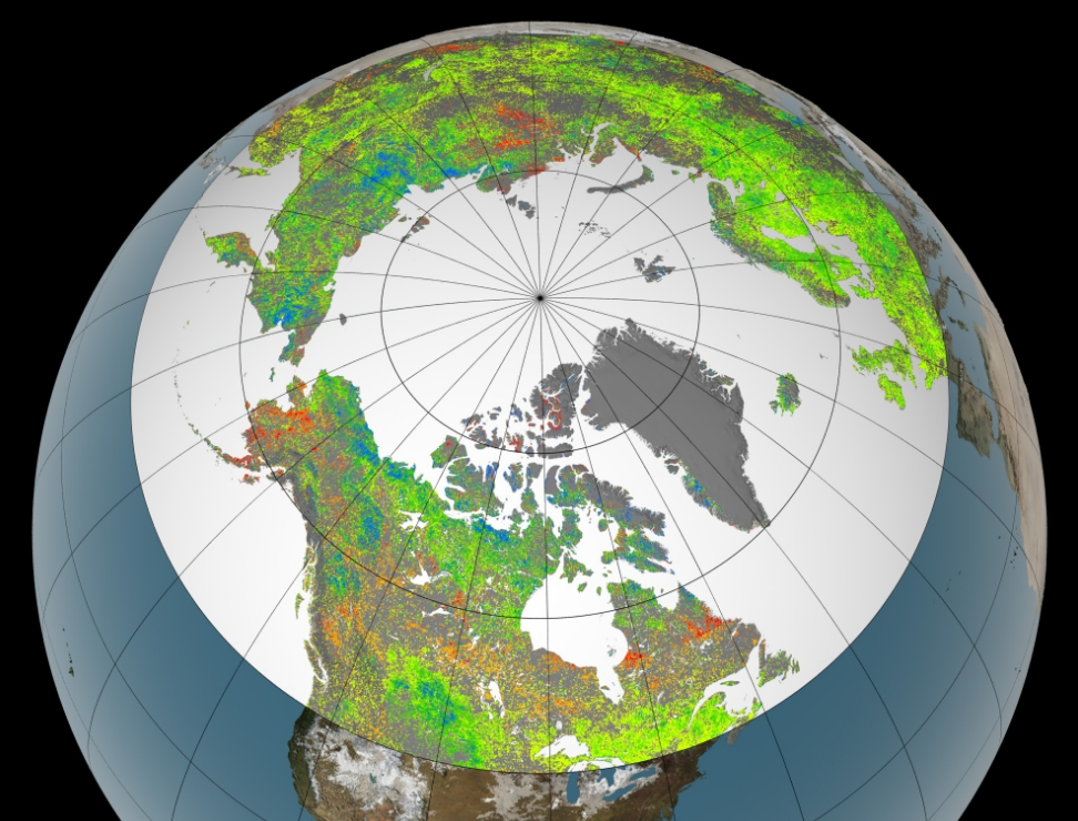 Le verdissement des hautes latitudes, un frein au changement climatique ?