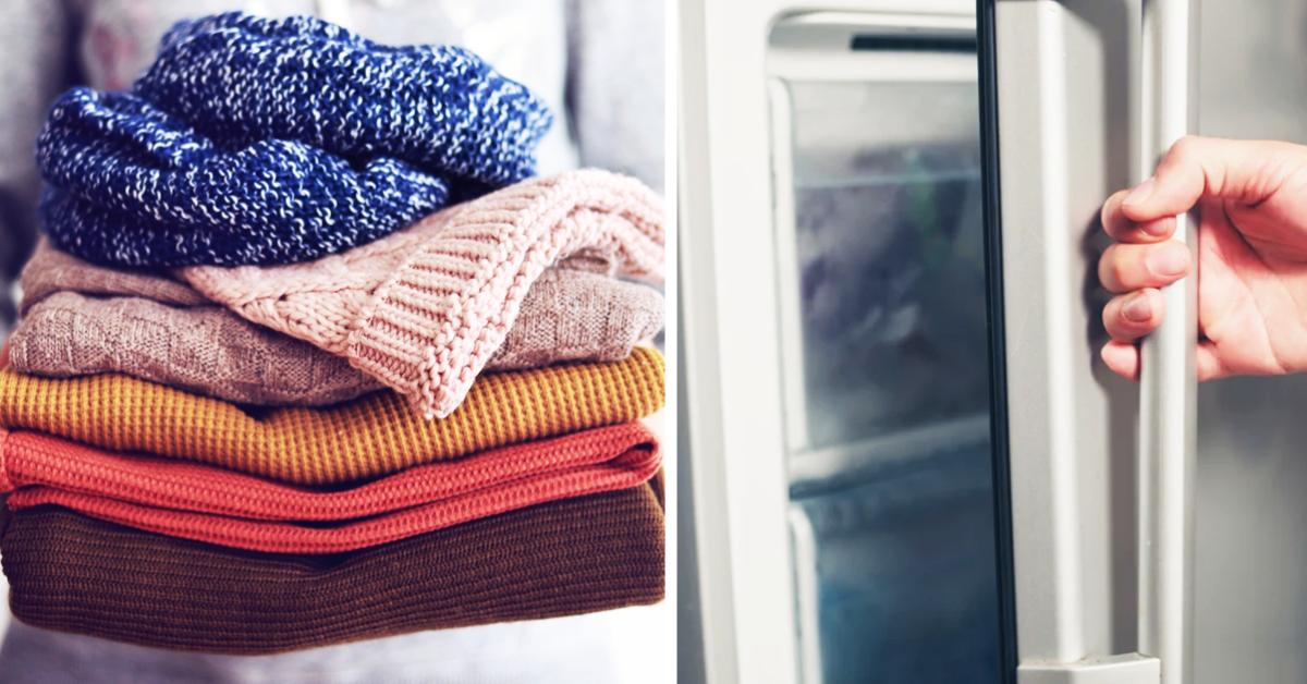 Comment nettoyer vos vêtements en laine ? L'astuce du congélateur qui gardera vos pulls moelleux